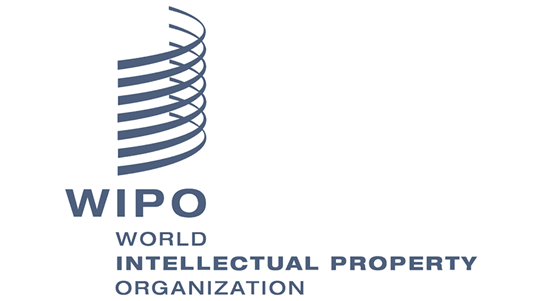 wipo ip finance valuation